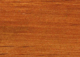 Chestnut (Satin)