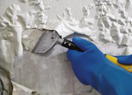 Paint & Varnish Remover