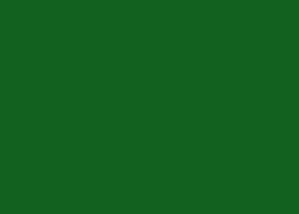 Green (Gloss)